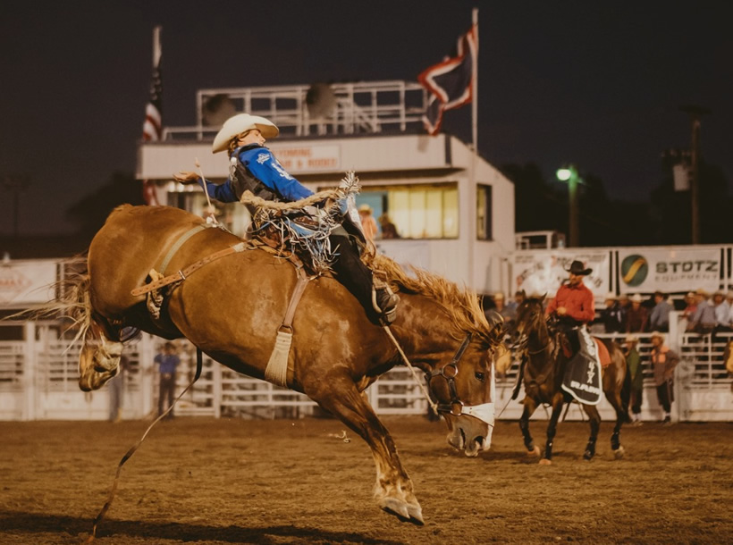Wyoming State Fair & Rodeo in Douglas, Wyoming
